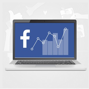 W.I.N. Facebook Analytics